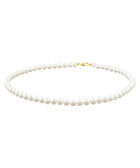 0.5cm freshwater pearl & gold necklace